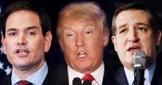 Trump Attacked GOP debate immigration reform